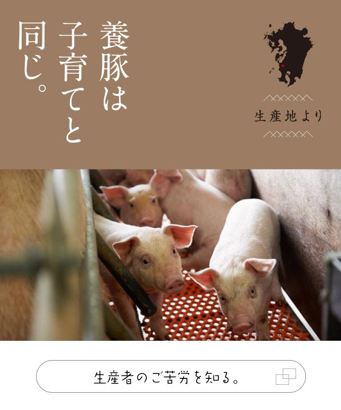 養豚は子育てと同じ。